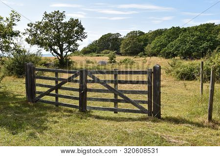 Wooden Gate By A Pastureland In Summer Season At The Island Oland In Sweden