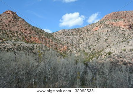 Sunny Winter Vista On A Verde Canyon Escarpment And Foreground Flora, In Northern Arizona.