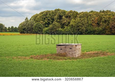 Strange Wooden Box In The Middle Of A Large Grassland In North Brabant, Netherlands. The Soil Around