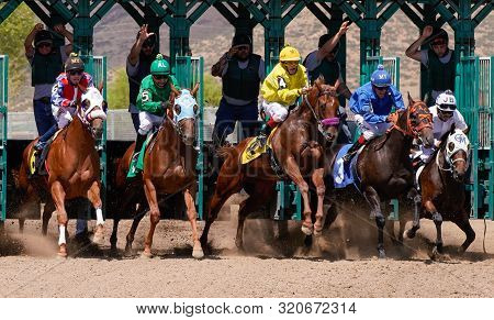 Race Horses Leaving The Starting Gate At Arizona Downs In Prescott Valley, Arizona On September 1, 2