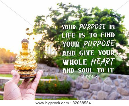 Your Purpose In Life Is To Find Your Purpose And Give Your Whole Heart And Soul To It - Buddha