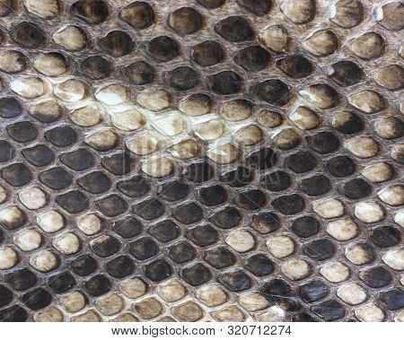The Background Of The Beautiful Natural Tanned Leather Reticulated Python