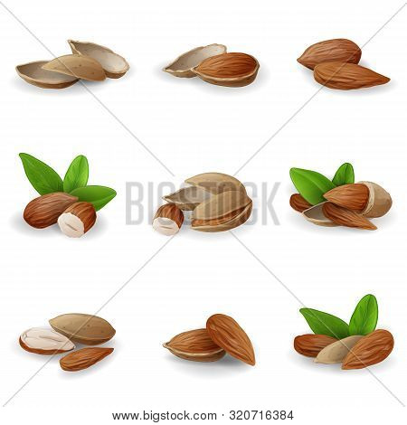 Almond Icons Set. Cartoon Set Of Almond Vector Icons For Web Design