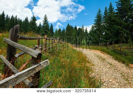 Beautiful summer landscape - country road on hills with spruces, wooden fence, cloudy sky at bright sunny day. Village with wooden homes. Carpathian mountains. Ukraine. Europe. Travel background.