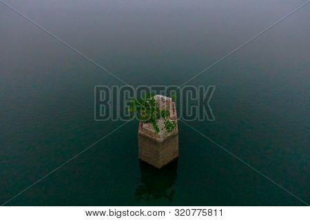 A Pillar With Tree On Backwaters Of Kerala, India - Backwaters Are A Network Of Brackish Lagoons And