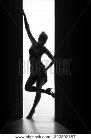 Beautiful Super Sexy Dancer Woman Stands And Poses Next To A Door. Body Silhouette.