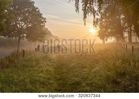 Atmospheric Sunrise With Fog Along The River Leie In Lauwe,  Menen, Belgium