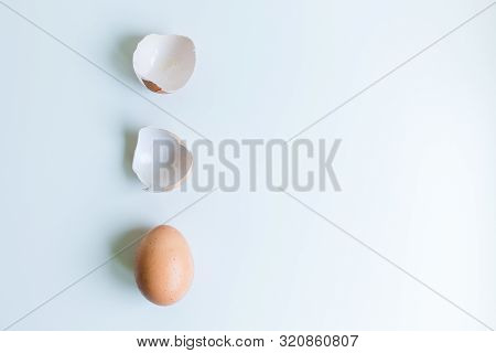 Brown Chicken Egg And Eggshell On A White Background With Copy Space. Flat Lay. poster