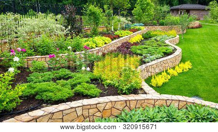 Landscaping Panorama Of Home Garden. Scenic View Of Landscaped Garden In Backyard. Landscape Design