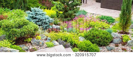 Landscape Design With Flowers, Stones And Coniferous Plants. Landscaping Panorama Of Home Garden. Be