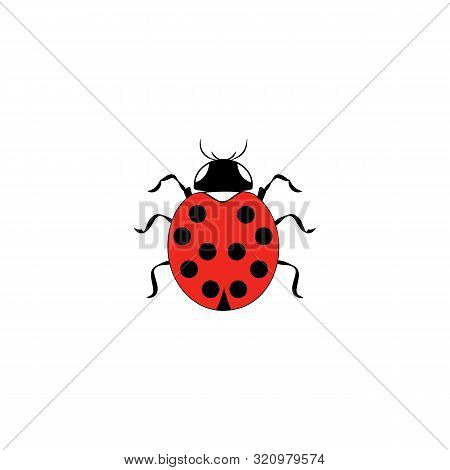 Ladybird Isolated. Illustration Ladybug. Cute Colorful Sign Red Insect Symbol Spring, Summer, Garden