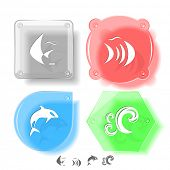 Animal icon set. Fish, Killer whale, wave.  Glass buttons. Vector illustration. Eps10. poster