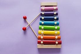 A Toy Wooden Colorful Xylophone On Purple Background With Copy Space. Children's Toy And Musical Ins