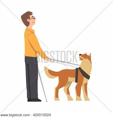 Blind Man Walking With Seeing Eye Dog On Leash, Trained Animal Helping Disabled Person, Rehabilitati