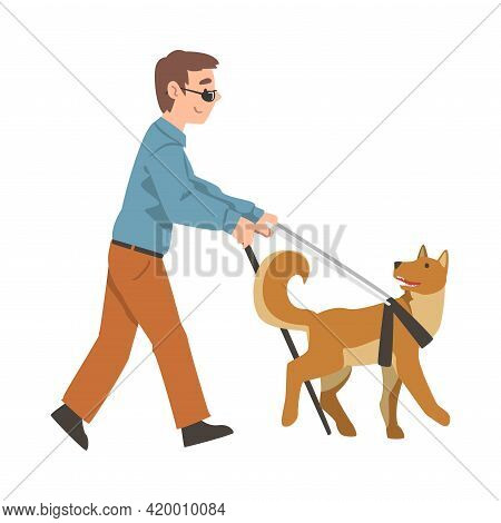 Blind Boy With Cane Guided By Seeing Eye Dog On Leash, Trained Animal Helping Disabled Person, Rehab