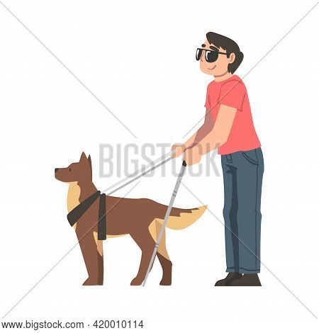 Seeing Eye Dog Guiding Blind Man, Trained Animal Helping Disabled Person, Rehabilitation, Handicappe