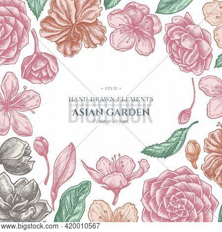 Floral Design With Pastel Hibiscus, Plum Flowers, Peach Flowers, Sakura Flowers, Magnolia Flowers, C