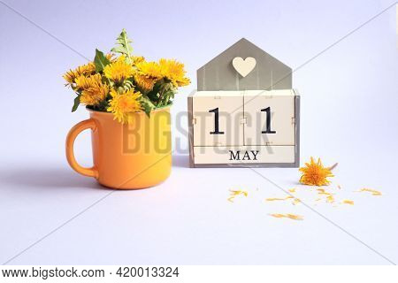 Calendar For May 11: Cubes With The Number 11, The Name Of The Month Of May In English, A Bouquet Of