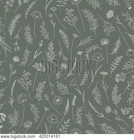 Wildflowers Seamless Pattern. Midsummer Meadow Herbs And Flowers. Elegant Floral Print, Thin Line, T