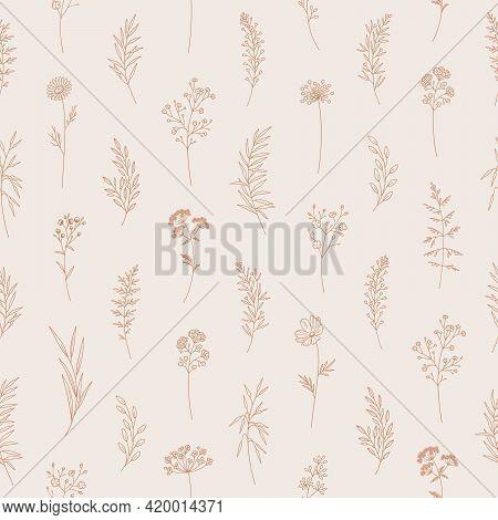 Wildflowers Seamless Pattern, Floral Vector Illustration. Elegant Print, Thin Line, Modern Style Des