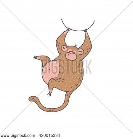Cute Monkey Animal. Cartoon Colorful Character Illustration.