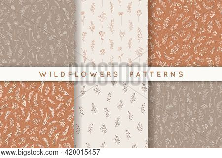 Set Of Seamless Patterns With Leaves, Herbs, Wildflowers. Hand Drawn Backgrounds In Earth Tones, Nat