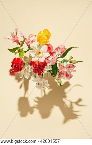 Beautiful Flowers In Glass Vases On Pastel Sunlit Background With Shadows. Nature Concept. Minimal S