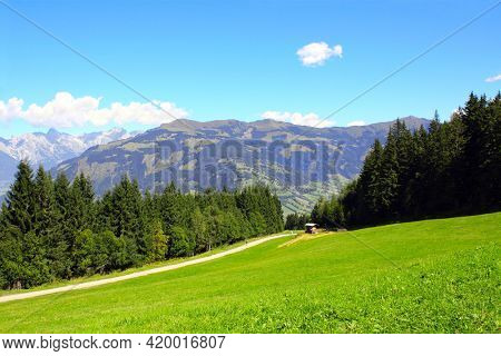 Alps mountains in Tirol, Austria. View of idyllic mountain scenery in Alps with green grass and fur-trees on sunny day. European mountain landscape in National park High Tauern (Hohe Tauern)