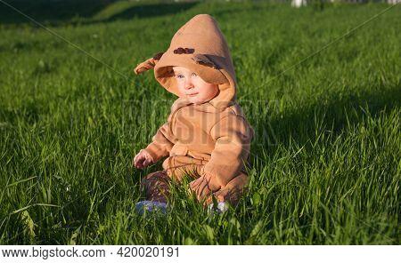 Baby Sitting In Green Grass
