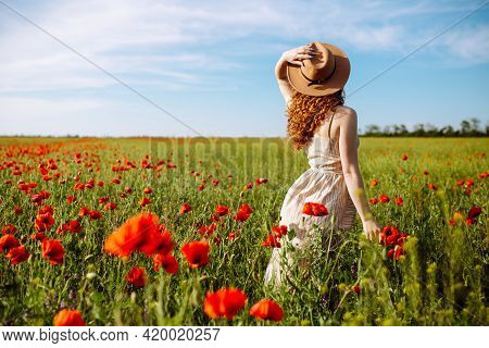 A Girl With Red Hair In A Hat Posing In A Poppy Field. A Woman Runs Her Hands Over Blooming Poppies.