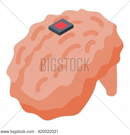Research Human Brain Icon. Isometric Of Research Human Brain Vector Icon For Web Design Isolated On