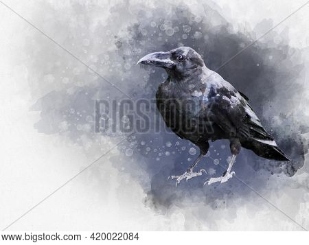 Portrait Of A Crow Bird, Watercolor Painting