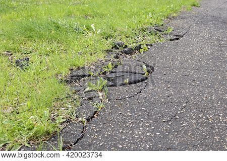 Broken Asphalt Pavement And Green Grass Close Up