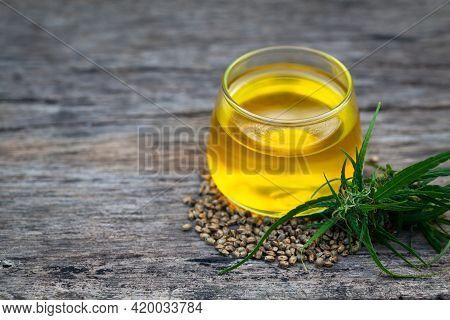 Cannabis Oil, Cbd Oil Cannabis Extract, Ecological Hemp Plant Herbal Pharmaceutical Cbd Oil From A J