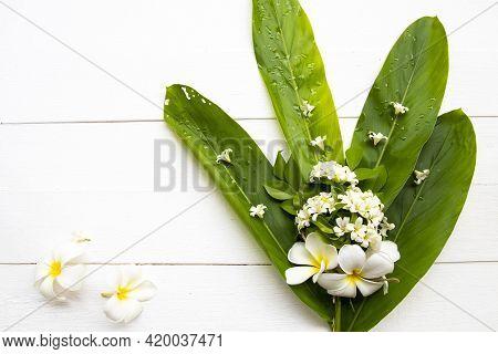 White Flowers Jasmine, Frangipani Local Flora Of Asia Arrangement Flat Lay Postcard Style On Backgro
