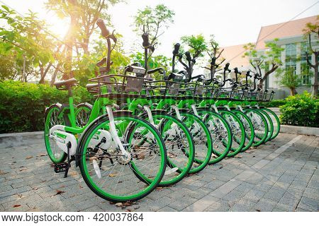 App Bicycles For City Bike-sharing, Parking In A Public Area In  University. Concept Of Eco-friendly