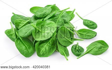 Spinach Leaves Isolated On White Background. Pile Of Fresh Green Baby Spinach Top View. Flat Lay.