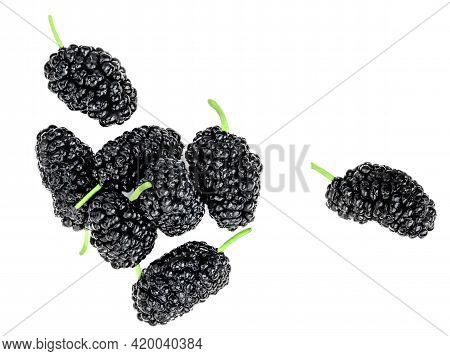 Fresh Pile Of Blackberries Isolated On The White Background. Black Berry  Top View. Flat Lay.
