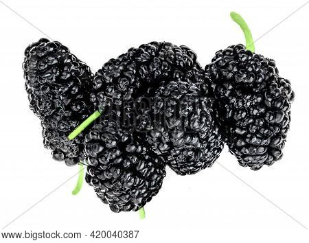 Fresh Blackberries Isolated On The White Background. Black Berry  Top View. Flat Lay.