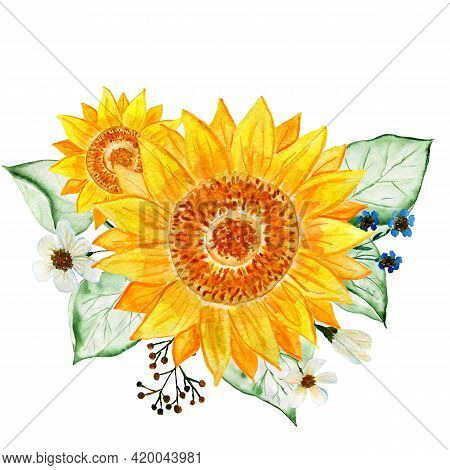 A Bouquet Of Sunflowers. Watercolor Flower Arrangement. Illustration For Invitations And Postcards.