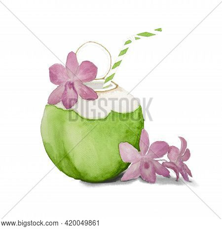 Green Coconut Palm Tree Fruit Illustration Watercolor Drawing, Fruits Juice Drinking And Pink Orchid