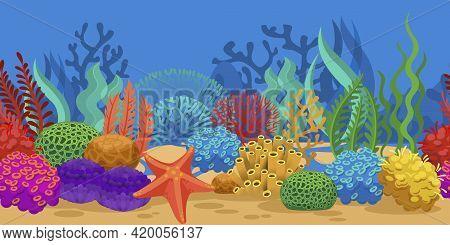 Coral Seamless Border. Ocean Reef Seaweeds, Oceanarium Seabed. Sea Sponge Starfish On Sand Bottom Ve
