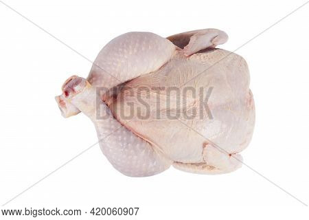 Fresh Raw Chicken Isolated On White Background With Clipping Path. Top View. Whole Fresh Chicken Iso