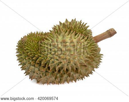 Green Durian, A Close Up Of Thai Tropical Smelly Fruit Food Isolated On White Background.