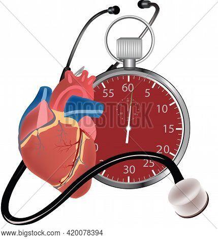 Stopwatch Human Heart Stopwatch Human Heart Stopwatch Human Heart Stopwatch Human Heart