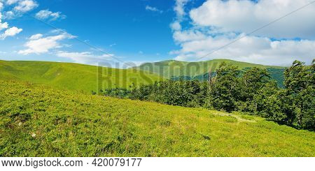 Beech Trees On The Mountain Meadow. Great Summit Beneath A Sky With Clouds In The Distance. Beautifu