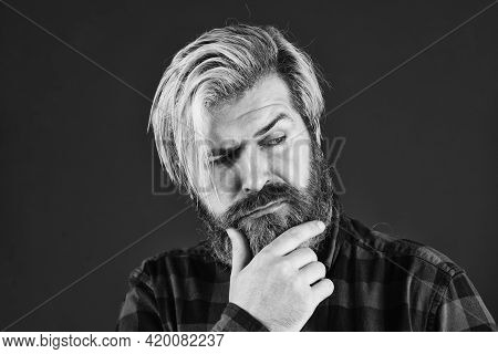 Bearded Man Long Beard. Brutal Caucasian Hipster With Moustache. Portrait Unshaven Guy. Barbershop C