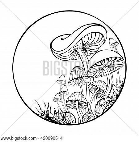 Artistically Drawn, Outline, Silhouette, Stylized Mushrooms And Moss In  Frame On White Background