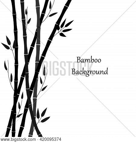Black Silhouette Of Bamboo On A White Background. Minimalistic Design. Bamboo Plant And Place For Te