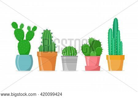 Cactus Set In A Flat Style. Different Home Cacti In Pots. House Succulents. Vector Illustration